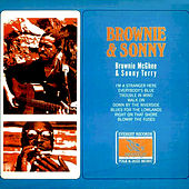 Brownie & Sonny by Sonny Terry