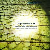SynapsenSalat (Deep Electronic Brain Stimulation of Dub Techno House and Ambient) de Various Artists