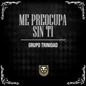 Me Preocupa Sin Ti (En Vivo) by Grupo Trinidad