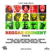 Reggae Segment Riddim de Various Artists