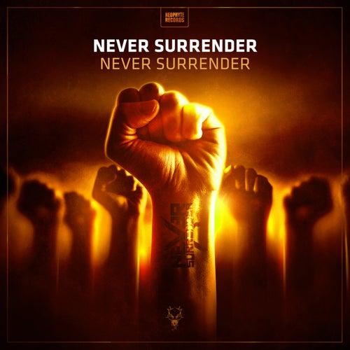 Never Surrender by Never Surrender (1)