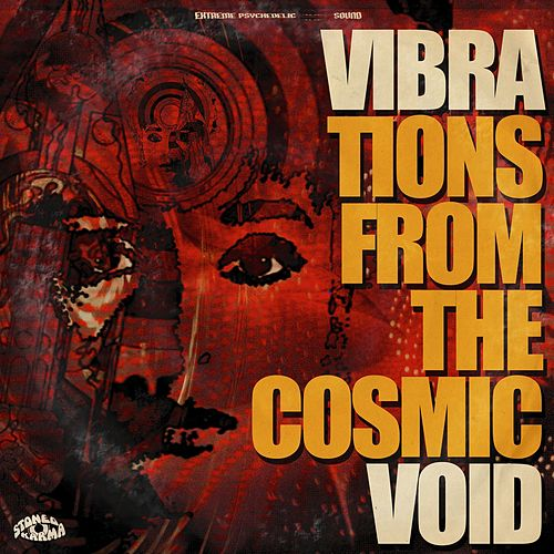 Vibrations from the Cosmic Void von Vibravoid