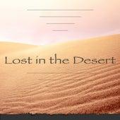 Lost in the Desert von Modis Chrisha