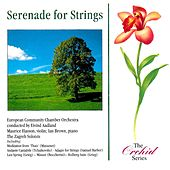 Serenade For Strings by Various Artists