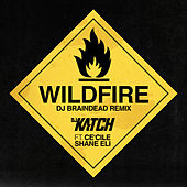 Wildfire (DJ BrainDeaD Remix) von DJ Katch