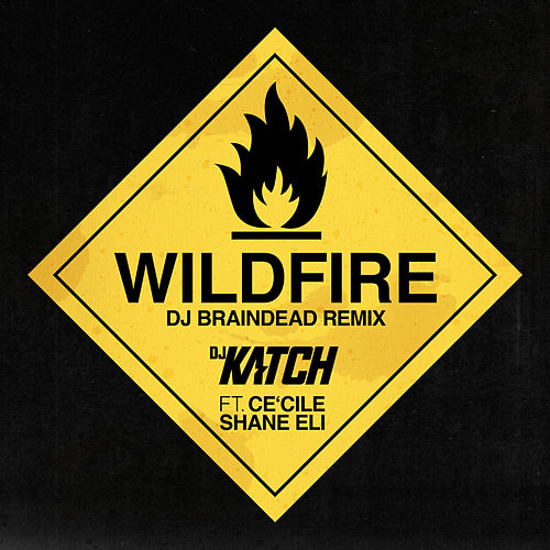 Wildfire (DJ BrainDeaD Remix) by DJ Katch