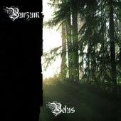 Belus by Burzum