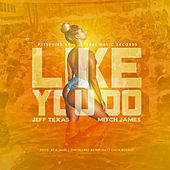 Like You Do de Jeff Texa$
