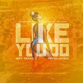 Like You Do by Jeff Texa$