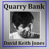 Quarry Bank de David Keith Jones