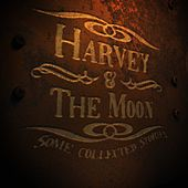 Some Collected Stories by Harvey