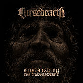 Enslaved by the Insignificant de Cursed Earth