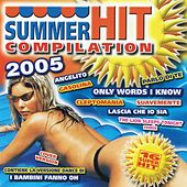 Summer Hit Compilation by Various Artists