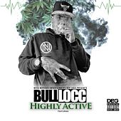 Highly Active by Bull Locc