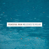 Peaceful Rain Melodies to Relax de Nature Sounds Artists