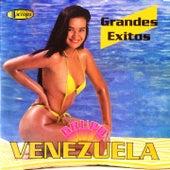 Grandes Éxitos by Grupo Venezuela