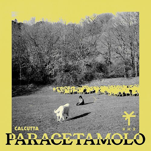 Paracetamolo (TY1 Remix) di Calcutta