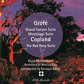 Grofe: Grand Canyon Suite von Various Artists