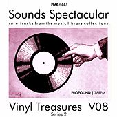 Vinyl Treasures, Series 2, Volume 8 by Various Artists