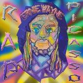 Rap Picasso by Ernie Wayne