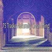 75 Tracks Naturally Clean Mind von Massage Therapy Music