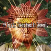 49 Tracks Drenched In Serenity von Massage Therapy Music