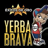 Éxitos de Oro de Yerba Brava