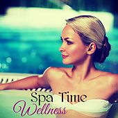 Wellness Spa Time – Chillout for Massage, Spa Music, Soothing Sounds for Wellness and Relaxation by Cocoon
