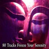 80 Tracks Freeze Your Serenity von Entspannungsmusik