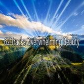 62 Tracks Overwhelming Beauty de Meditación Música Ambiente
