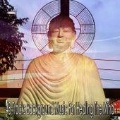 48 Tracks Background Music For Healing The Mind de Meditação e Espiritualidade Musica Academia