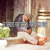 66 Tracks For Tracks For Young Pups by Ocean Sounds Collection (1)