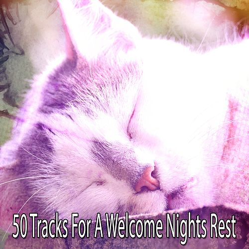 50 Tracks For A Welcome Nights Rest by Nature Sound Series