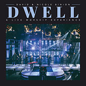 Dwell de David (Psychedelic)