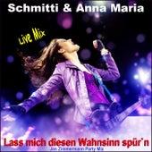 Lass mich diesen Wahnsinn spür'n (Jan Zimmermann Party Mix) de Schmitti