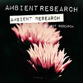 Ambient Research de Various Artists