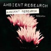 Ambient Research de Various Artists