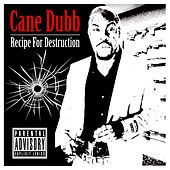 Recipe for Destruction de Cane Dubb