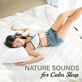 Nature Sounds for Calm Sleep by Nature Sounds (1)