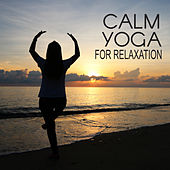 Calm Yoga for Relaxation von Lullabies for Deep Meditation