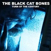 Turn of the Century by Black Cat Bones