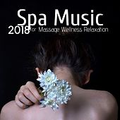 Spa Music for Massage Wellness Relaxation 2018 by Spa Music (1)