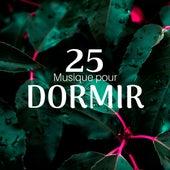 25 Musique pour Dormir, Douce Mémoire, Sons de la Nature, Sommeil profond de Douce Nuit