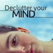 Declutter your Mind de Zen Lee