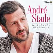 Willkommen Gänsehaut von André Stade