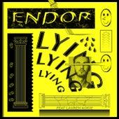 Lying (feat. Lauren Ackie) by Endor