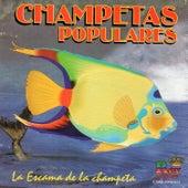 Champetas Populares la Escama de la Champeta by Various Artists