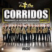 Corridos Narrando la Verdadera Historia, Pt. 2 by Banda Cruz de Oro