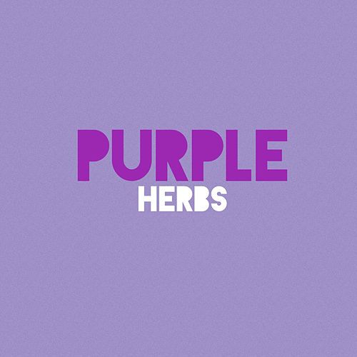 Purple by Herbs