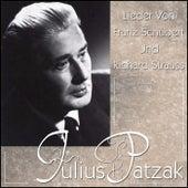 Lieder von Franz Schubert und Richard Strauss de Julius Patzak